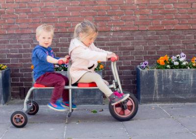 Abcoude-fietsje-violen-1024x682